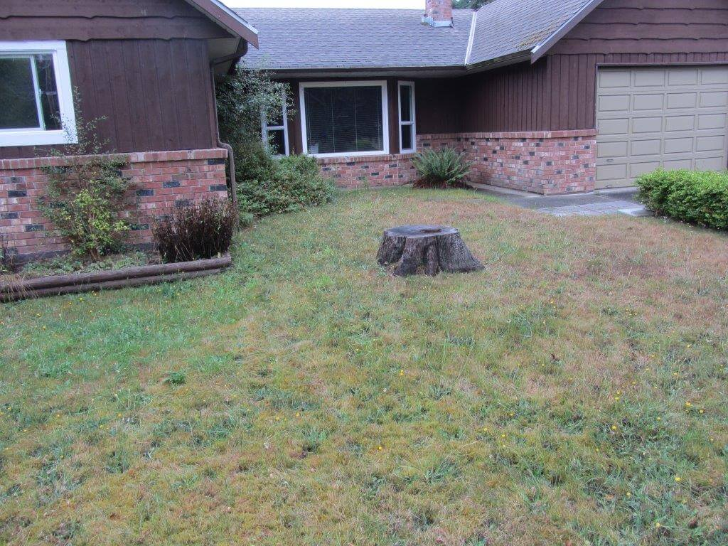 Front exterior and lawn - Before